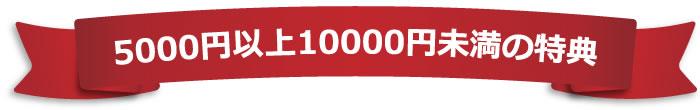 5000円以上10000円未満の特典